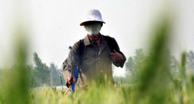 Per rinfrescarVi la memoria – L'oncologa Patrizia Gentilini: Bayer-Monsanto, chi fa profitto con farmaci e pesticidi può avere a cuore la salute?