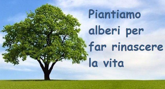Piantiamo alberi per far rinascere la vita