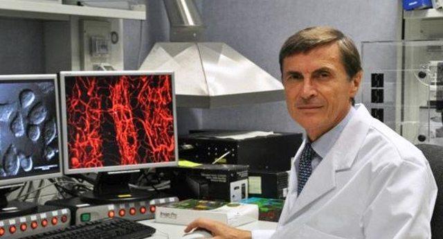 La fantastica scoperta tutta italiana sulla molecola che limita lo sviluppo del tumore.