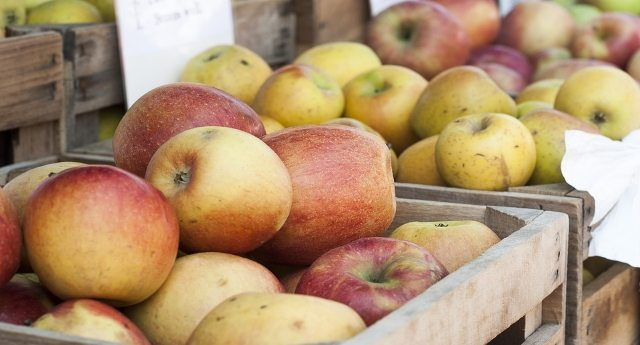 L'accusa di SlowFood – Buona parte delle mele che trovate oggi sui banchi del mercato sono dell'anno scorso!