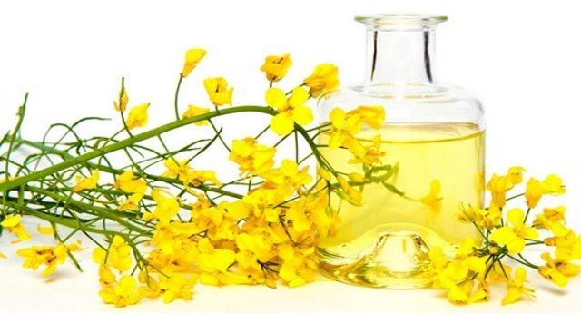 L'olio di iperico – Il prodotto antirughe più potente che esiste in natura