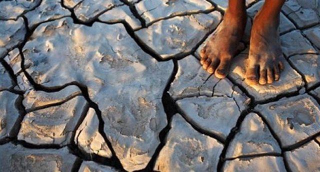 Come la giungla del capitalismo selvaggio condanna l'Africa alla povertà infinita