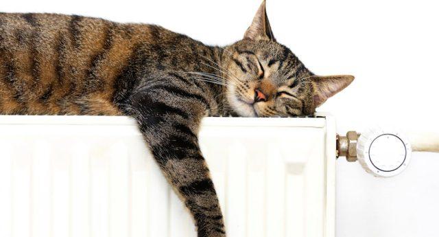 Pronti all'accensione dei termosifoni? 7 consigli per risparmiare