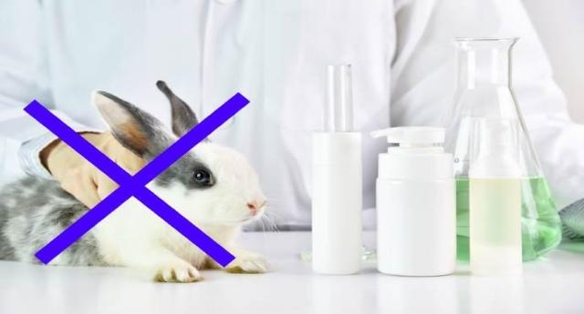 Importantissimo – Ecco cosmetici e prodotti NON testati sugli animali: tutti i nomi delle aziende CRUELTY FREE…