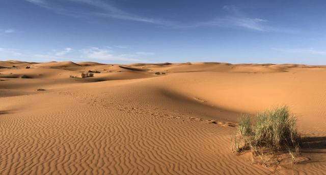 Un progetto straordinario: far fiorire il deserto del Sahara grazie a eolico e fotovoltaico.