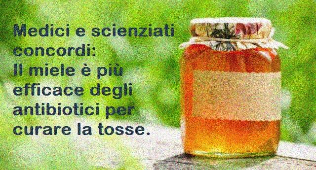 Ecco perchè il miele è più efficace degli antibiotici per curare la tosse secondo medici e scienziati…