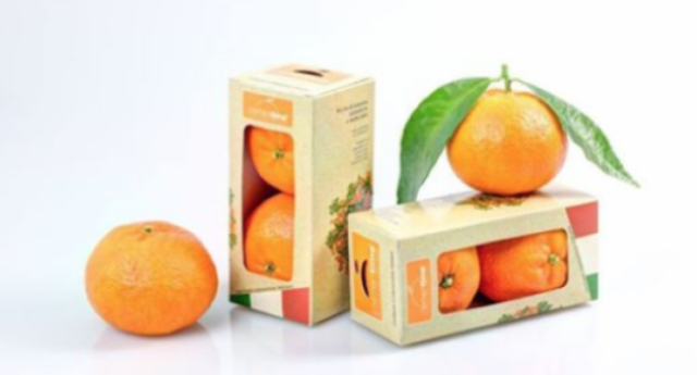 Le clementine nei distributori automatici al posto delle merendine: l'idea geniale di 2 ragazzi calabresi
